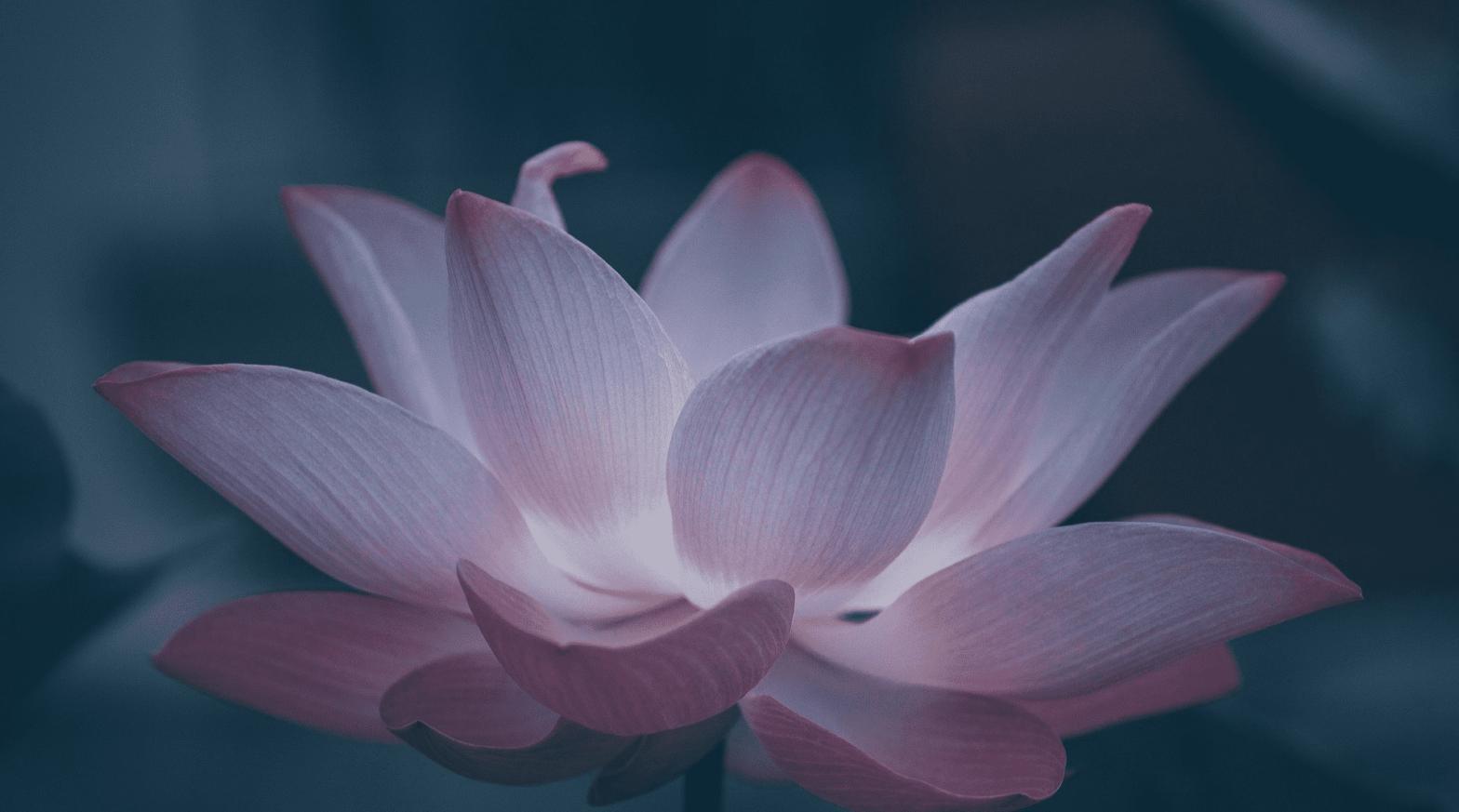 Medytacja do Mamy